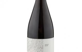 Comahue Pinot Noir