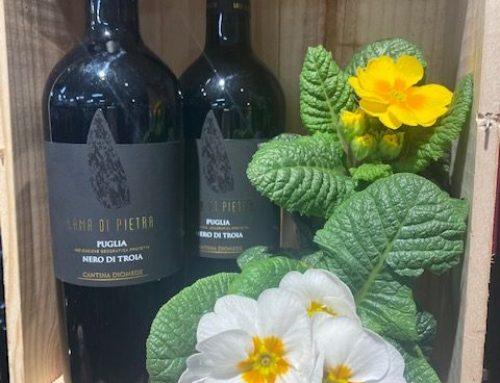 Wine of the Week…Lama di Pietra